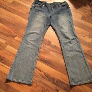 Blue Ann Taylor Loft Size 8 Curry Boot Jeans